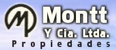 Gonzalo Montt Steffens