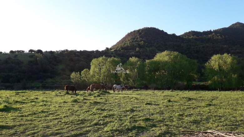 Agrícola en Venta en J-40 Camino El Molino sector San Carlos de Comalle